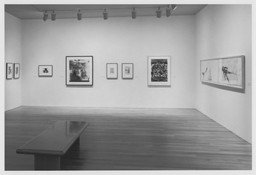 The Human Figure: A Modern Vision: Selected Drawings from the Collection. Jul 1–Sep 26, 1995. 1 other work identified