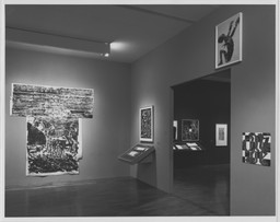 Thinking Print: Books to Billboards, 1980–1995. Jun 20–Sep 10, 1996. 5 other works identified