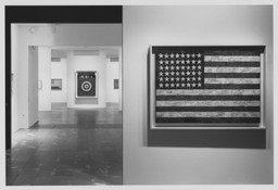 Jasper Johns: A Retrospective. Oct 20, 1996–Jan 21, 1997.