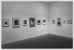 American Photography 1890–1965 from the Collection. Feb 20–Oct 8, 1997.
