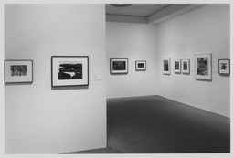 American Photography 1890–1965 from the Collection. Feb 20–Oct 8, 1997. 1 other work identified