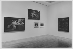 On the Edge: Contemporary Art from the Werner and Elaine Dannheisser Collection. Sep 30, 1997–Jan 20, 1998. 1 other work identified