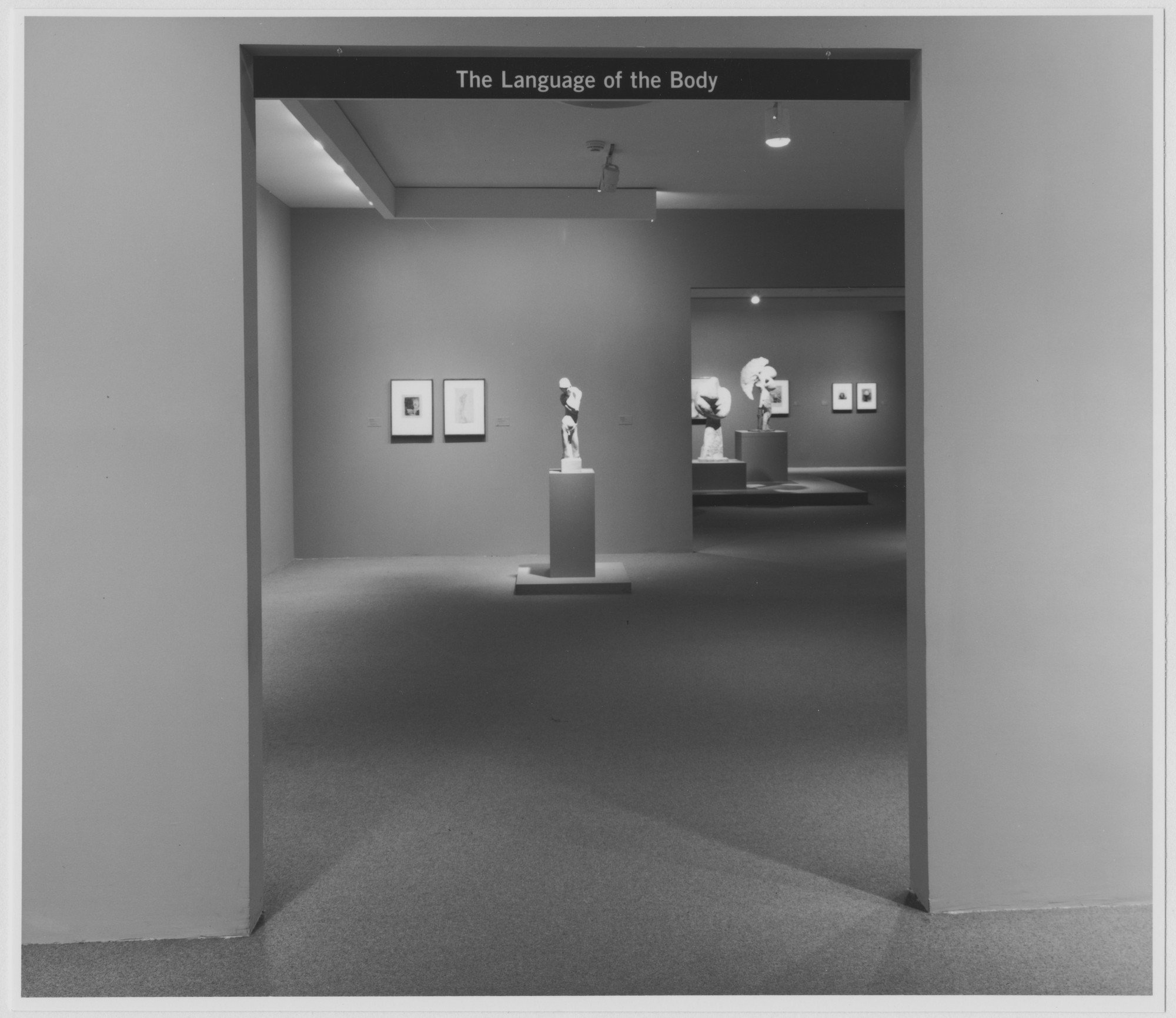 "Installation view of the exhibition, ""Language of the Body, "" in the series, ""Modern Starts,"" 1st of 3 cycles of ""MoMA 2000"" October 6, 1999–February 1, 2000. Photographic Archive. The Museum of Modern Art Archives, New York. IN1836A.1. Photograph by Katherine Keller."