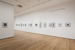 Modern Photographs from the Thomas Walther Collection, 1909–1949. Dec 13, 2014–Apr 19, 2015. 5 other works identified
