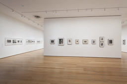 Modern Photographs from the Thomas Walther Collection, 1909–1949. Dec 13, 2014–Apr 19, 2015. 12 other works identified