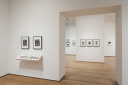 Modern Photographs from the Thomas Walther Collection, 1909–1949. Dec 13, 2014–Apr 19, 2015. 11 other works identified
