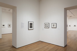 Modern Photographs from the Thomas Walther Collection, 1909–1949. Dec 13, 2014–Apr 19, 2015. 1 other work identified