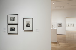 Modern Photographs from the Thomas Walther Collection, 1909–1949. Dec 13, 2014–Apr 19, 2015. 3 other works identified