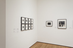 Modern Photographs from the Thomas Walther Collection, 1909–1949. Dec 13, 2014–Apr 19, 2015. 9 other works identified