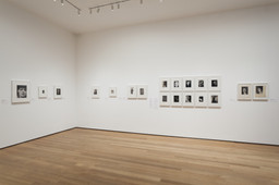 Modern Photographs from the Thomas Walther Collection, 1909–1949. Dec 13, 2014–Apr 19, 2015. 17 other works identified