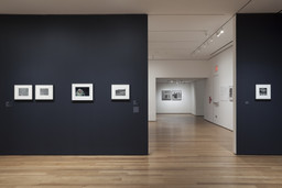 The Shape of Things: Photographs from Robert B. Menschel. Oct 29, 2016–May 7, 2017. 2 other works identified