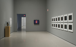 Multiplex: Directions in Art, 1970 to Now. Nov 21, 2007–Jul 21, 2008. 3 other works identified