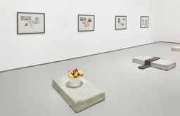 Robert Gober: The Heart Is Not a Metaphor. Oct 4, 2014–Jan 18, 2015.