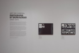 Art on Camera: Photographs by Shunk-Kender, 1960–1971. May 17–Oct 4, 2015. 1 other work identified