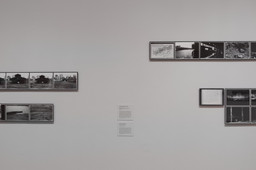 Art on Camera: Photographs by Shunk-Kender, 1960–1971. May 17–Oct 4, 2015. 10 other works identified