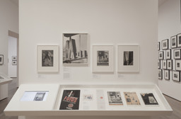 From Bauhaus to Buenos Aires: Grete Stern and Horacio Coppola. May 17–Oct 4, 2015.