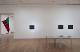 Installation photo, 198 of 222