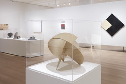 Sur moderno: Journeys of Abstraction—The Patricia Phelps de Cisneros Gift. May 28–Sep 12, 2020. 5 other works identified