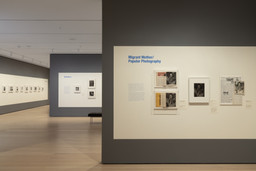 Dorothea Lange: Words & Pictures. Explore the exhibition online. 4 other works identified