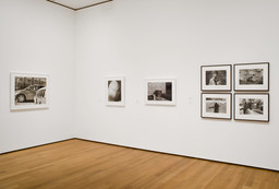 Photography Collection Rotation: Menschel Gallery. Jan 19–Apr 23, 2007. 6 other works identified