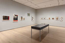 Engineer, Agitator, Constructor: The Artist Reinvented. Through Apr 10. 14 other works identified