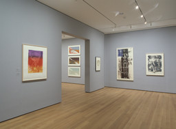 Artists & Prints: Masterworks from The Museum of Modern Art, Part 1. Nov 20, 2004–Mar 14, 2005. 5 other works identified