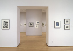 Photography: Inaugural Installation. Nov 20, 2004–Jun 6, 2005. 2 other works identified