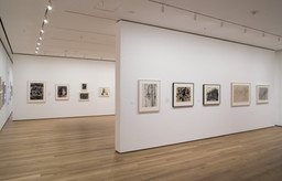 Drawing from the Modern, 1945 - 1975. Mar 30–Aug 29, 2005. 3 other works identified