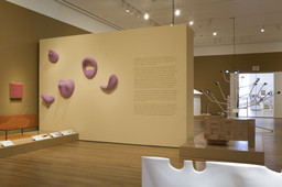 Installation photo, 15 of 47