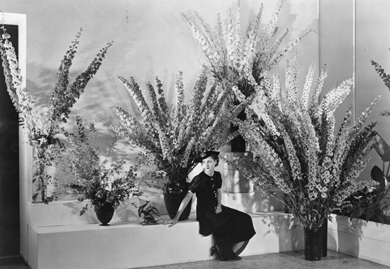 Installation view of the exhibition Edward Steichen's Delphiniums. The Museum of Modern Art, June 24, 1936–July 1, 1936. The Museum of Modern Art Archives