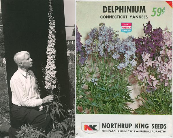 "Carl Sandburg with the ""Carl Sandburg"" delphinium (c. 1938), Umpawaug House (Redding, Connecticut). Photo by Edward Steichen. Gelatin silver print. Seed packet of ""Delphinium Connecticut Yankees,"" bred by Edward Steichen (c. 1973)"