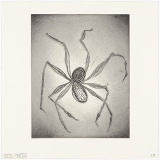 "Untitled, plate 8, from the illustrated book, Ode à ma mère, 1995. Drypoint. Plate: 9 3/8 x 7 7/16"" (23.8 x 18.9 cm). © 2013 Louise Bourgeois Trust."