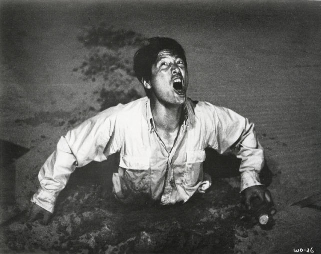 Woman in the Dunes. 1963. Japan. Directed by Hiroshi Teshigahara