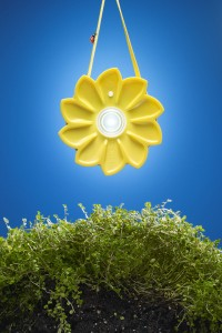 The Little Sun is featured on the cover of MoMA Design Store's spring catalog