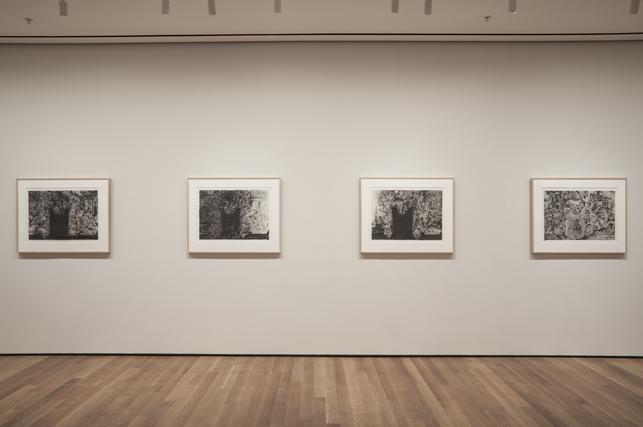 Installation view of Jasper Johns: Regrets, The Museum of Modern Art, New York, March 15 - September 1, 2014. Photo: John Wronn.