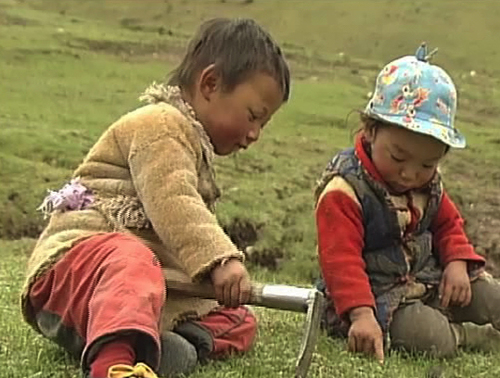 Yartsa Rinpoche. 2013. China/France. Directed by Dorje Tsering Chenaktsang. 101 min. Courtesy of Chenaktsang and Trace Foundation