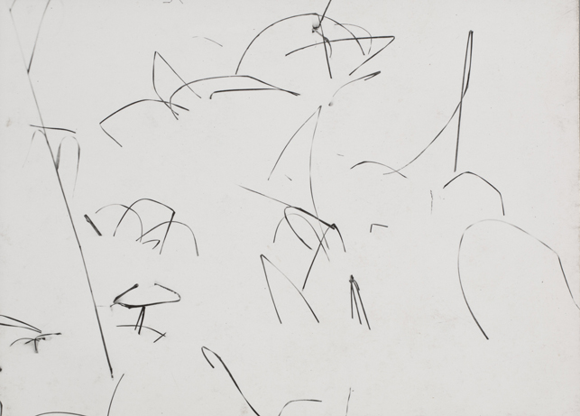 """Harry Callahan.  Weeds in Snow, Detroit. 1943. Gelatin silver print, 3 1/4 x 4 7/16"""" (8.2 x 11.3 cm). Gift of the photographer. © 2015 The Estate of Harry Callahan"""