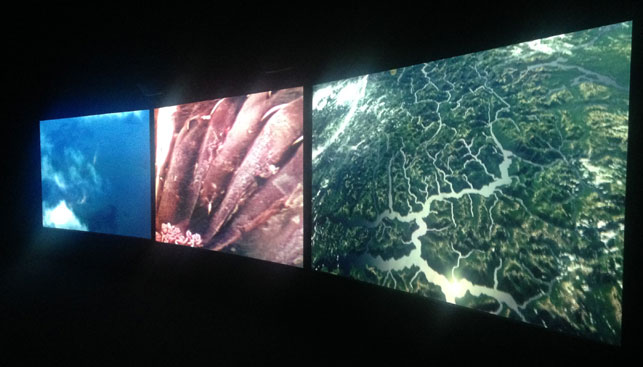 John Akomfrah. Vertigo Sea. 2015. Three-channel, HD video installation, 38 min. Installation view, Venice Biennale, May 9–November 22, 2015. Photo: Zalika Azim