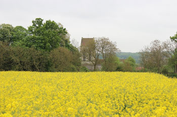 Fields near the church. Photo by Alex Roediger
