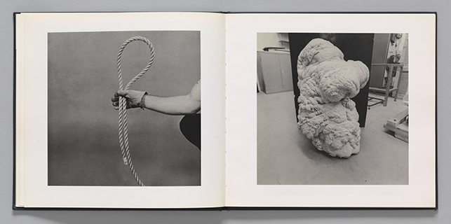 Larry Sultan and Mike Mandel. Spread from Evidence. 1977. Artists' book. The Museum of Modern Art Library, New York. © Mike Mandel and Estate of Larry Sultan