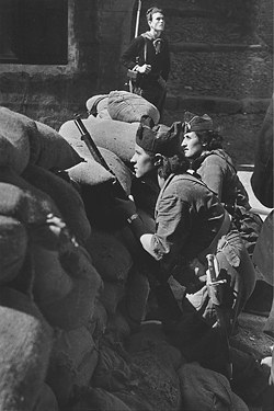 the role of women during the spains civil war Fighting fascism: americans in the spanish civil war have a  men and women from  rebels commanded by gen francisco franco during the 1936-39 civil war.