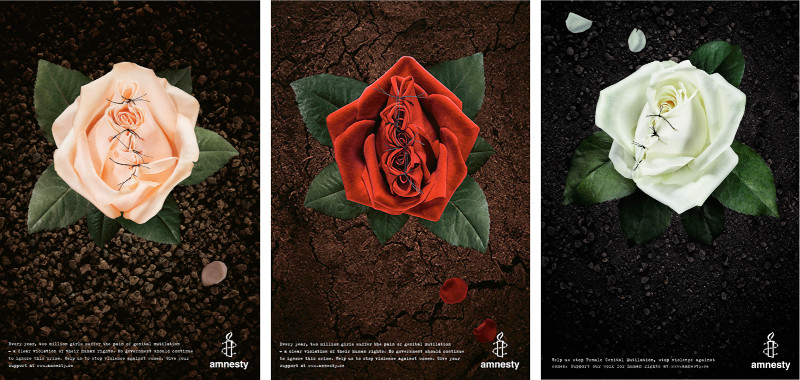 RosesSmall (1)