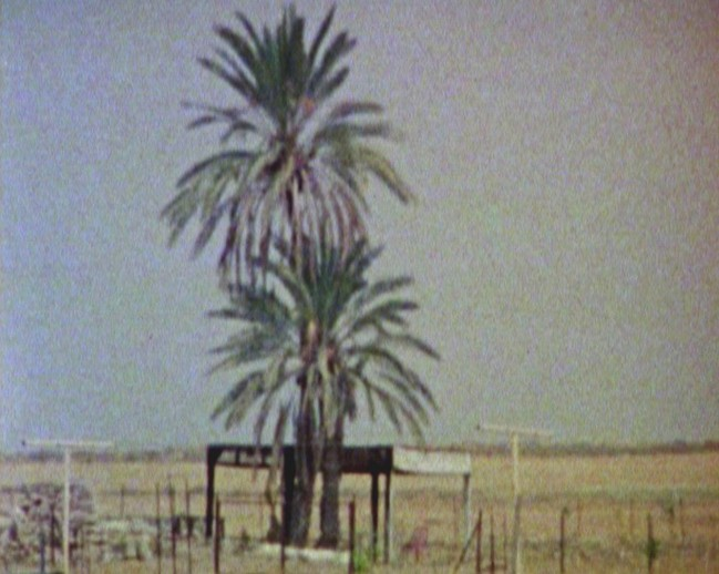 Haris Epaminonda. Stills from Chronicles. 2010. Three Super 8 films transferred to video (color, sound), 16:33, 26:55, and 2:11 min. loops. Courtesy the artist, Site Gallery, Sheffield, and Rodeo, Istanbul. © 2011 Haris Epaminonda