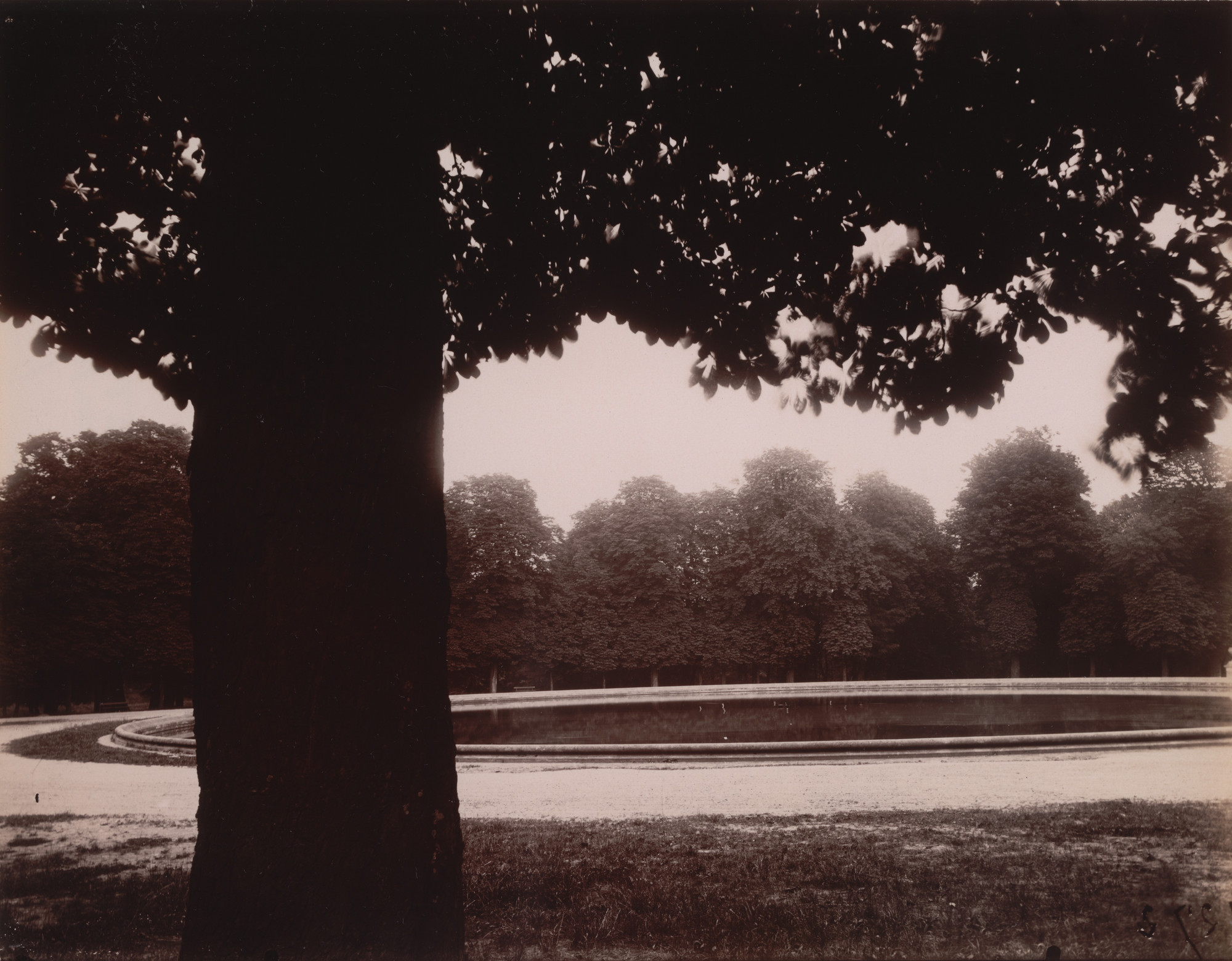 Eugène Atget. Saint-Cloud. June 1926