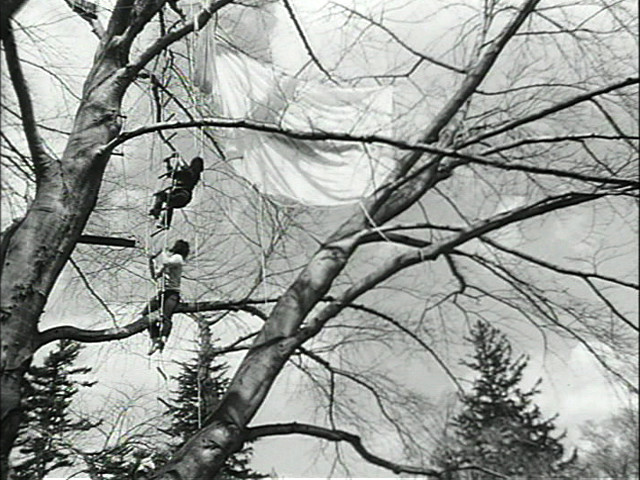 Gordon Matta-Clark. Program Two: Tree Dance. 1971
