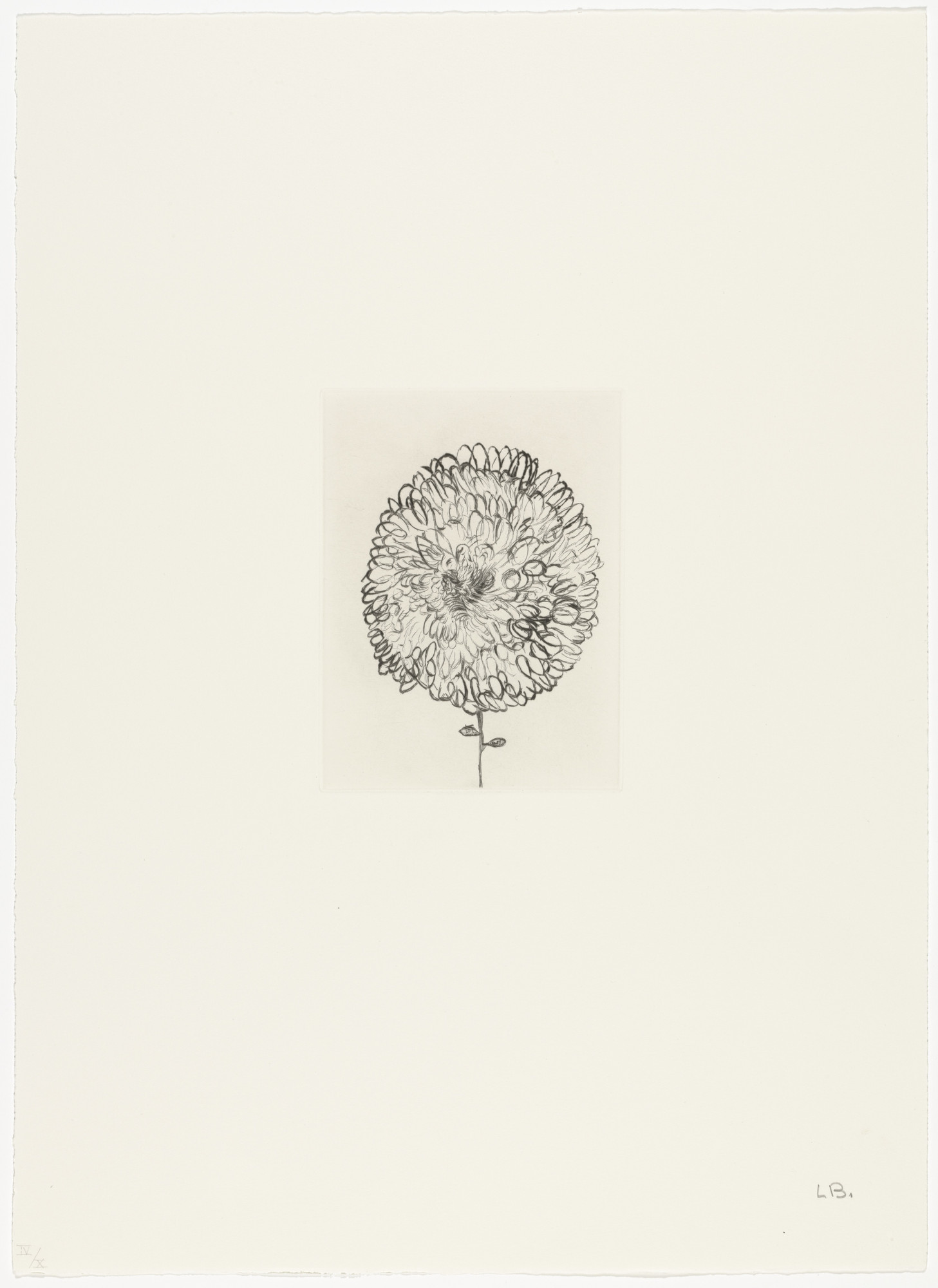Louise Bourgeois. Untitled, plate 1 of 10, from the portfolio, Homely Girl, A Life. 1992