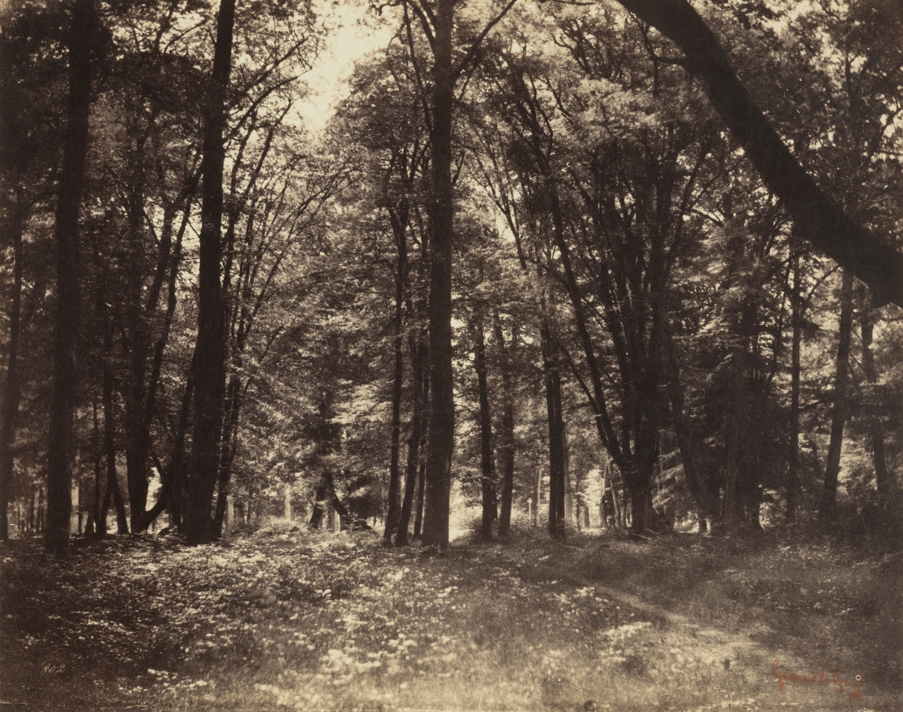 Gustave Le Gray. Untitled. 1852