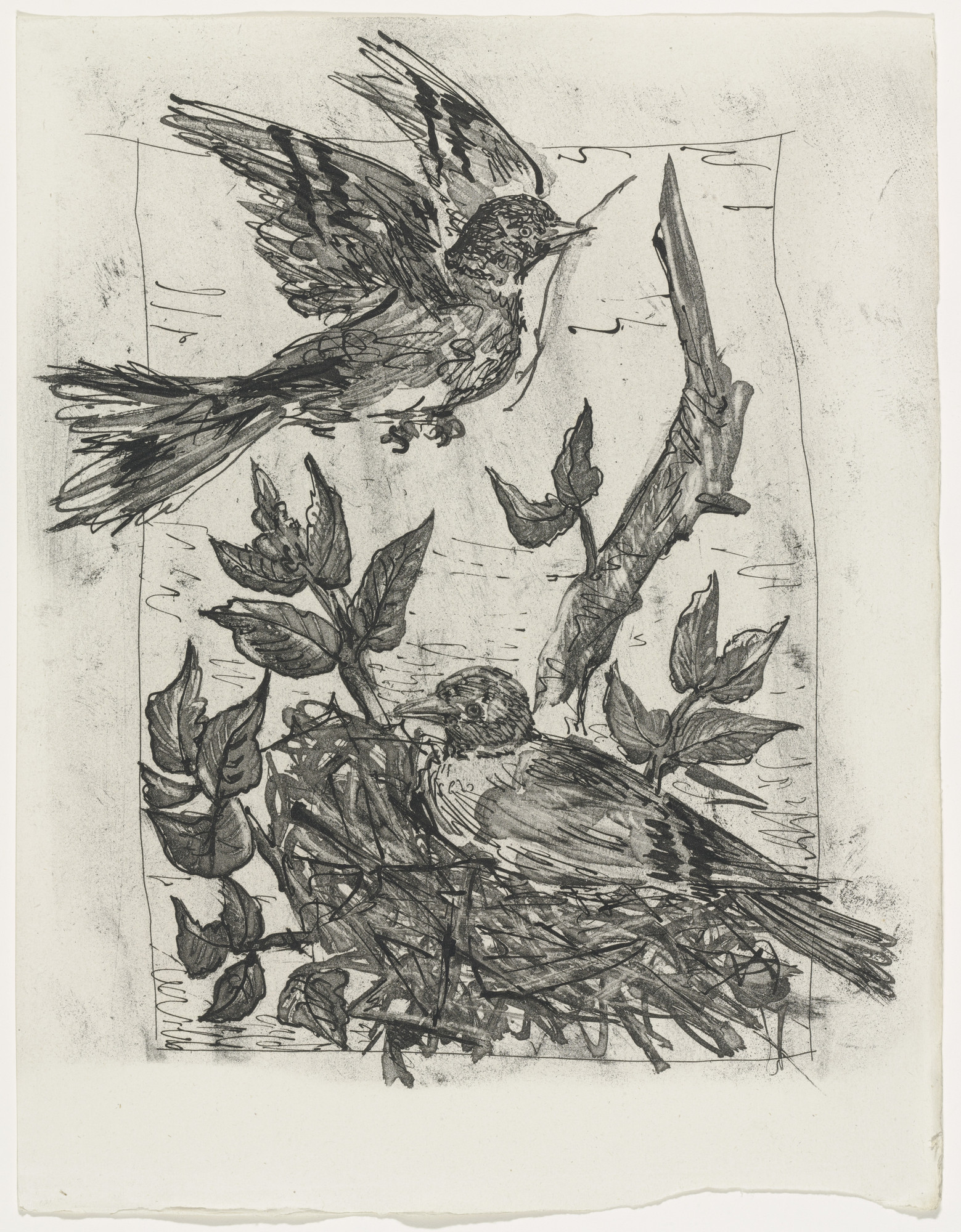 Pablo Picasso. The Goldfinch (Le Chardonneret) (plate, facing page 130) from Eaux-fortes originale pour des textes de Buffon (Histoire naturelle). 1936, published 1942