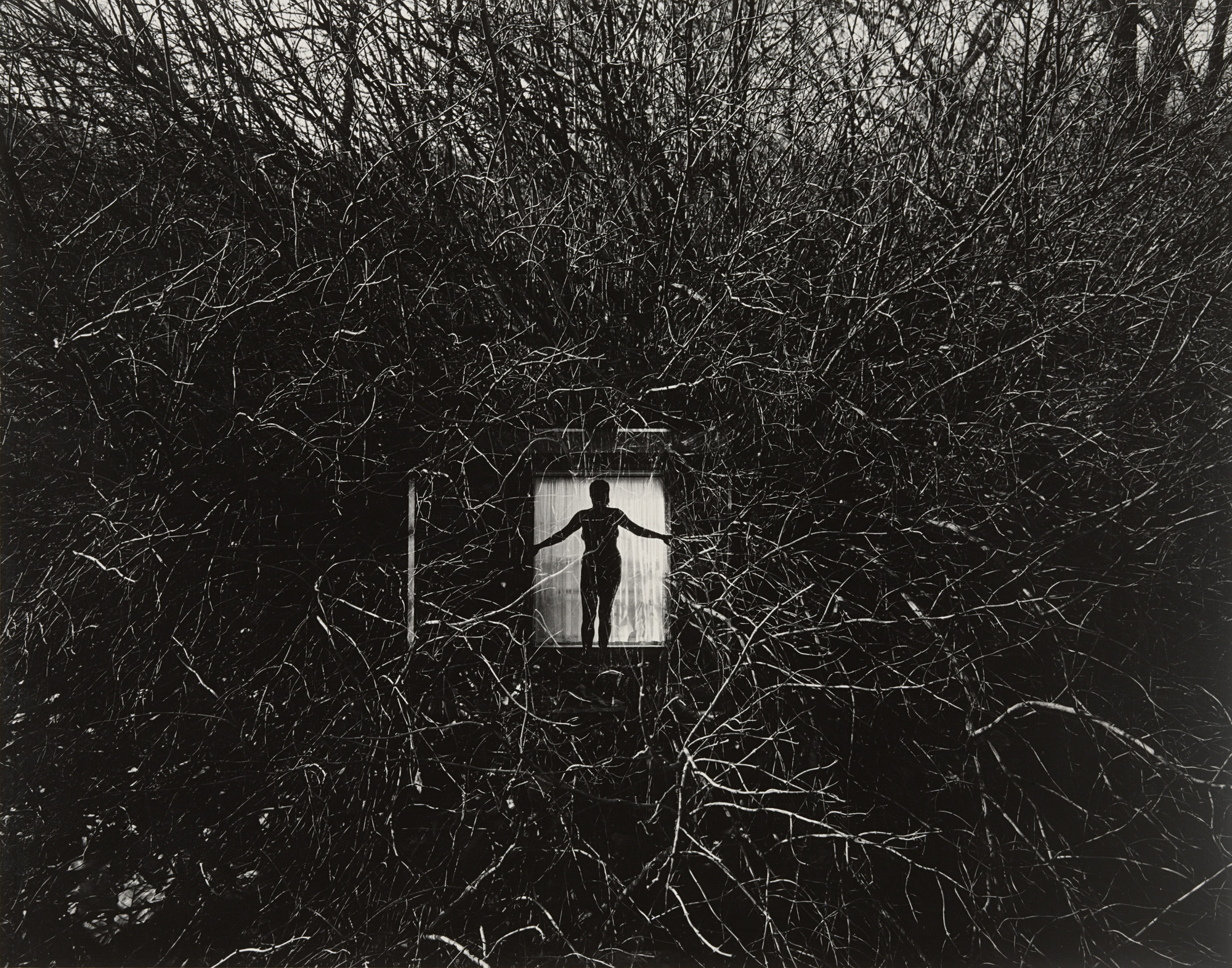 Harry Callahan. Eleanor, Chicago. 1951