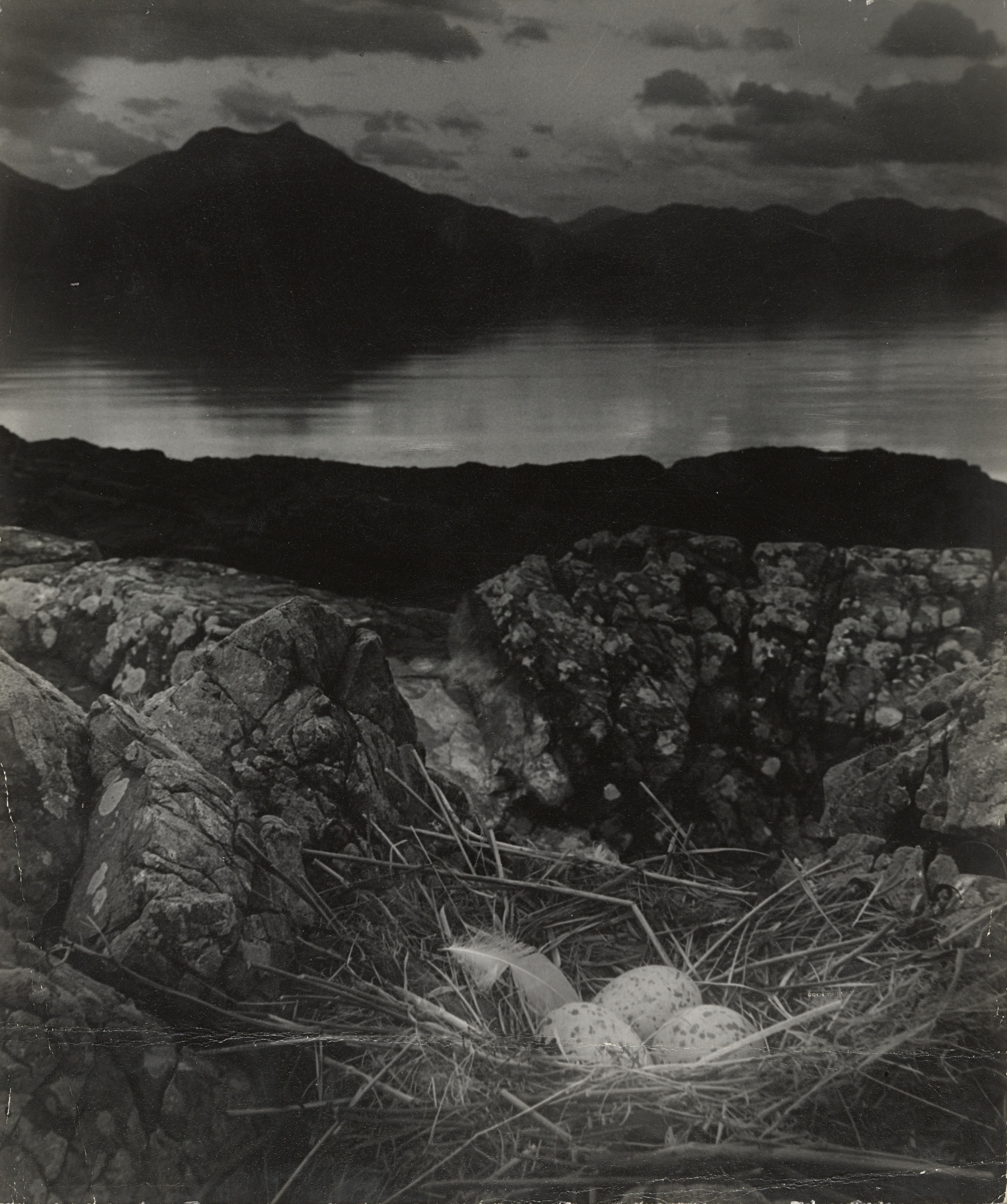 Bill Brandt. Gull's Nest, Late on Midsummer Night, Isle of Skye. 1947